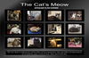 "The Cat's Meow : The Cat's Meow is available in a 2011 wall calendar on cafepress - probably after Labor Day of this year. The link to my shop is: http://www.cafepress.com/annsanstuff/  The calendar itself is the second item in the first row of my opening page there. It comes in a standard wall size calendar and an oversize one as well. The cats in three earlier calendars can be seen here in ""The Kitty Corner""  galleries."